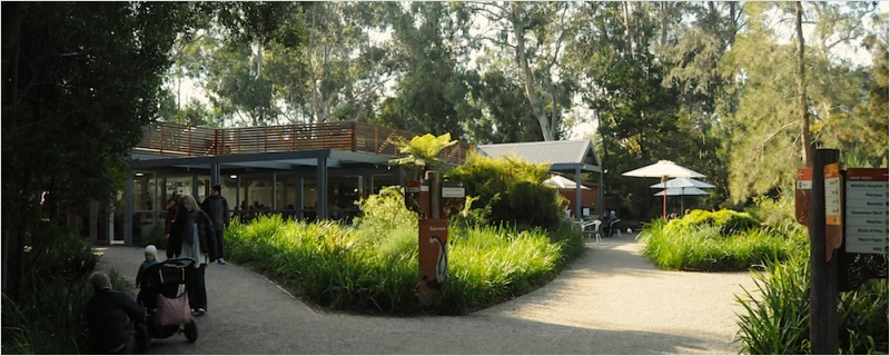Harvest Cafe at Healesville Sanctuary