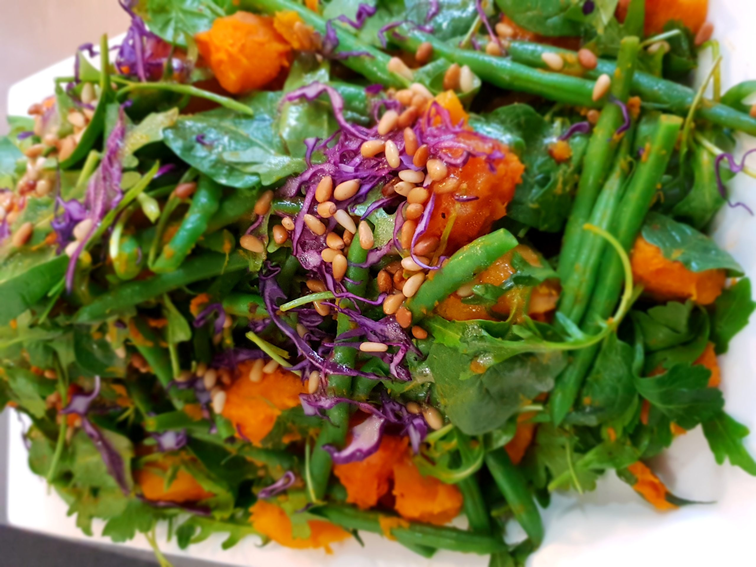 Sanctuary Harvest Salad